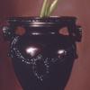 Still Life With Roman Urn